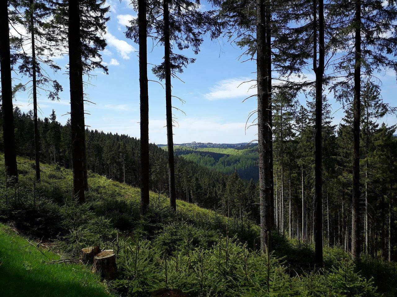 Blick_auf_Frauenwald2.jpg