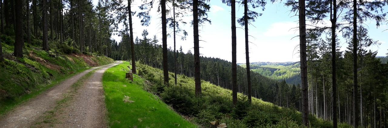 Blick_auf_Frauenwald3.jpg